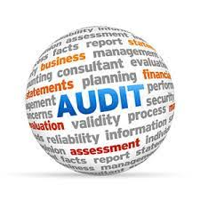 09-Auditing Software useful for businesses